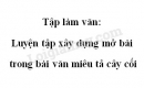Tập làm văn: Luyện tập xây dựng mở bài trong bài văn miêu tả cây cối trang 75 SGK Tiếng Việt 4 tập 2