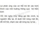 Câu 1 trang 23 sgk sinh học lớp 8