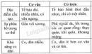 Bài 2 trang 17 SGK Sinh học 8