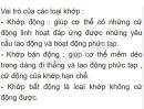 Bài 3 trang 27 SGK Sinh học 8