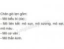 Bài 4 trang 17 SGK Sinh học 8