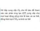 Câu 1 trang 67 sinh học