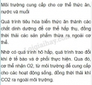 Bài 1 trang 101 SGK Sinh học 8