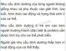 Bài 1 trang 114 SGK Sinh học 8