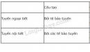 Câu 1 trang 175 sgk sinh lớp 8