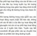 Câu 1 trang 186 sgk sinh học lớp 8
