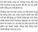 Bài 2 trang 212 SGK Sinh học 8