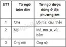 Soạn bài Chương trình địa phương (phần Tiếng Việt) trang 90 SGK Ngữ văn 8 tập 1