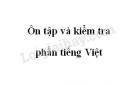 Soạn bài Ôn tập và kiểm tra phần tiếng Việt - Ngữ văn 8 tập 1