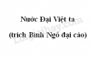 Soạn bài Nước Đại Việt ta