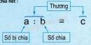 Lý thuyết phép chia