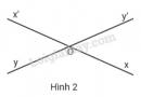 Bài 1 trang 82 sgk toán 7 - tập 1