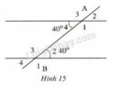Bài 22 trang 89 SGK Toán 7 tập 1