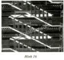 Bài 23 trang 89 sgk toán 7 - tập 1