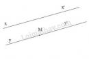 Bài 28 trang 91 sgk toán 7 - tập 1