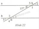 Bài 34 trang 94 SGK Toán 7 tập 1