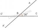 Bài 5 trang 82 sgk toán 7 - tập 1