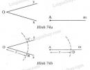 Bài 22 trang 115 - Sách giáo khoa toán 7 tập 1