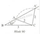Bài 30 trang 120 - Sách giáo khoa toán 7 tập 1