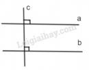 Bài 42 trang 98 - Sách giáo khoa toán 7 tập 1