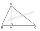 Bài 20 trang 64 sgk toán lớp 7- tập 2