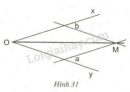 Bài 31 trang 70 sgk toán lớp 7- tập 2