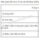 Bài 5 trang 86 SGK Toán 7 tập 2