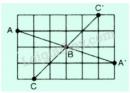 Bài 50 trang 95 sgk toán 8 tập 1