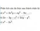 Bài 54 trang 25 SGK Toán 8 tập 1