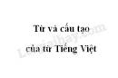 Soạn bài Từ và cấu tạo của từ Tiếng Việt