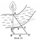 Bài 12 trang 64 - Sách giáo khoa toán 8 tập 2