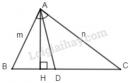 Bài 16 trang 67 - Sách giáo khoa toán 8 tập 2