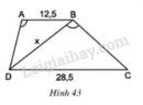 Bài 36 trang 79 - Sách giáo khoa toán 8 tập 2