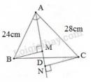 Bài 44 trang 80 - Sách giáo khoa toán 8 tập 2