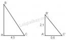 Bài 48 trang 84 - Sách giáo khoa toán 8 tập 2