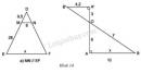 Bài 7 trang 62 - Sách giáo khoa toán 8 tập 2