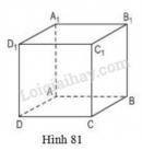 Bài 6 trang 100 sgk toán lớp 8 - tập 2