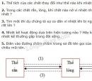 Bài tập lí thuyết ôn tập chương 3 trang 89 SGK Vật lí 6