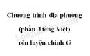 Soạn bài Chương trình địa phương (phần Tiếng Việt) rèn luyện chính tả