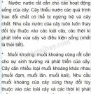 Bài 1 trang 37 SGK Sinh 6