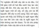 Bài 1 trang 47 SGK Sinh 6