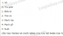 Bài 1 trang 50 SGK Sinh học 6
