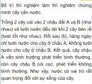 Bài 2 trang 37 SGK Sinh học 6