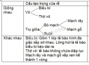 Bài 2 trang 50 SGK Sinh học 6