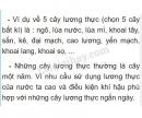 Bài 3 trang 15 SGK Sinh học 6