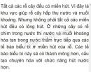 Bài 3 trang 33 SGK Sinh học 6