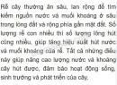 Bài 3 trang 39 SGK Sinh học 6