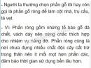 Bài 4 trang 52 SGK Sinh học 6