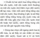 Bài 1 trang 56 SGK Sinh 6