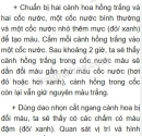 Bài 1 trang 56 SGK Sinh học 6